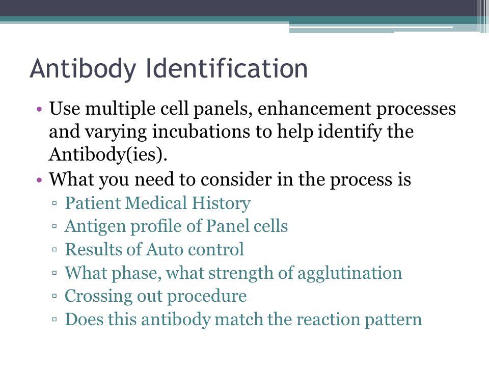 Antibody Identification