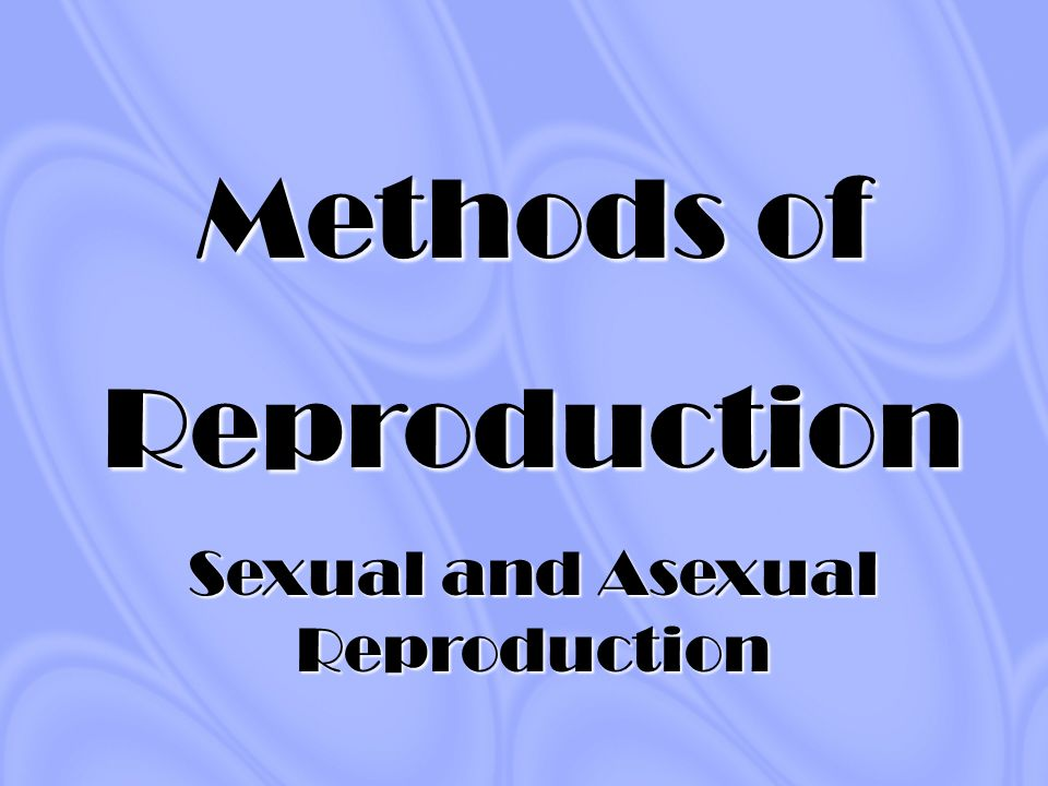 Modes of asexual reproduction ppt
