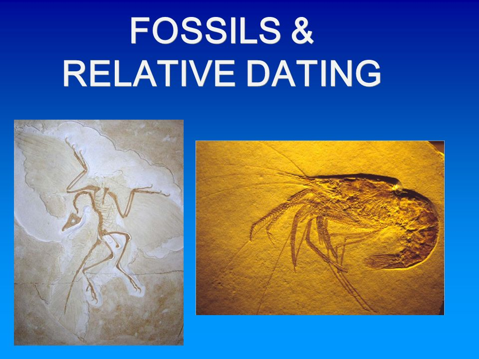 Fossil dating powerpoint Travel to Iran