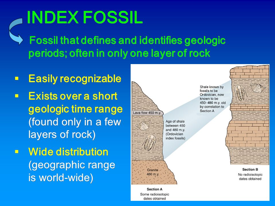 from Vance what are two types of dating fossils