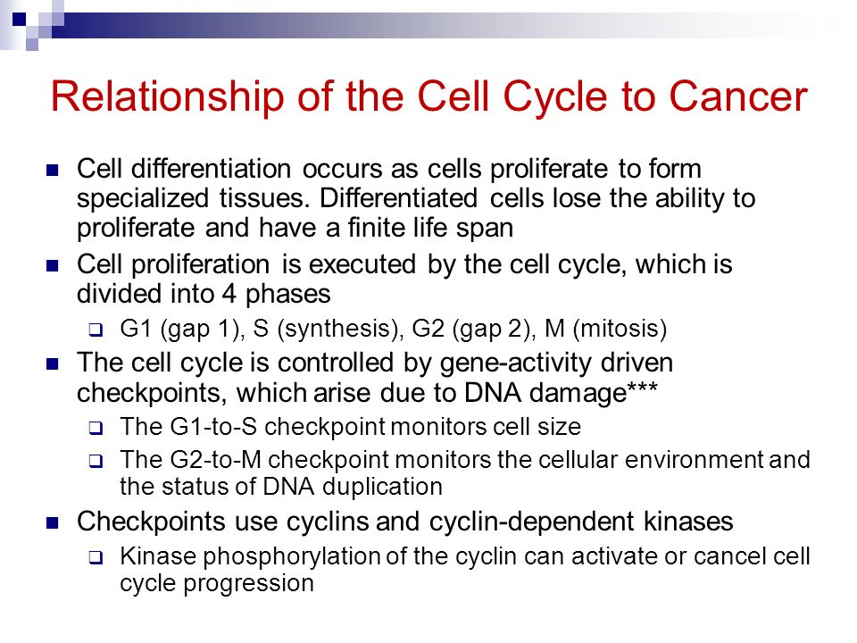what is the relationship between cancer and cells