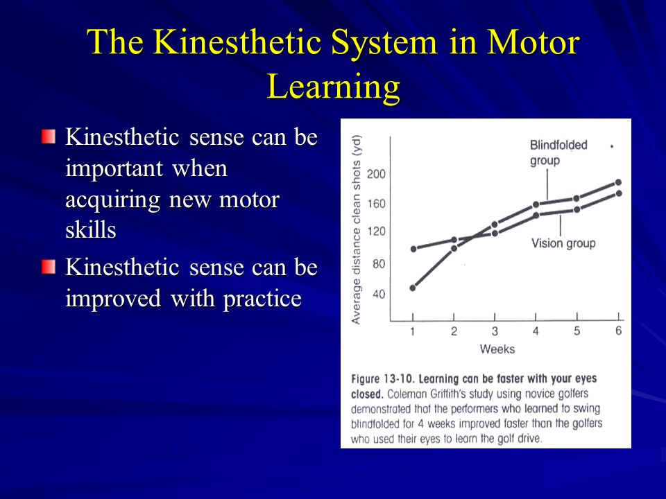 The Neural Control Of Movement Ppt Video Online Download