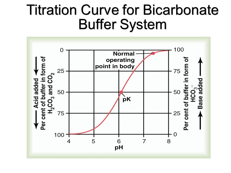 bicarbonate buffer system for dummies