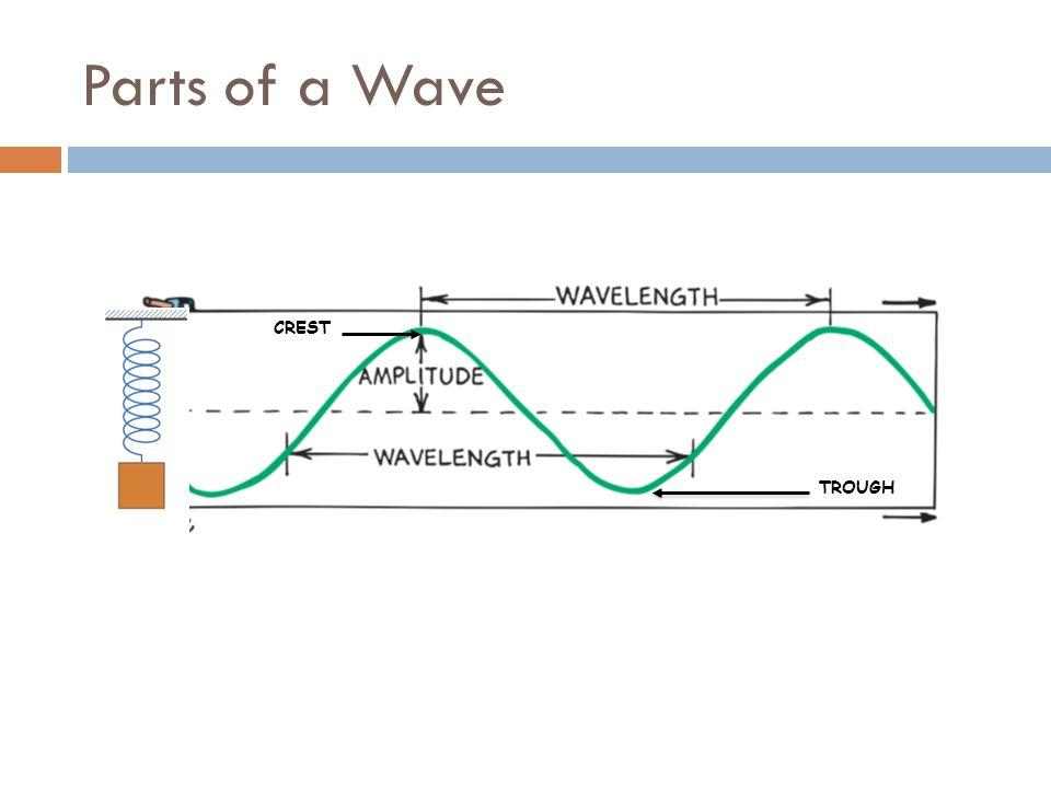 physics wave