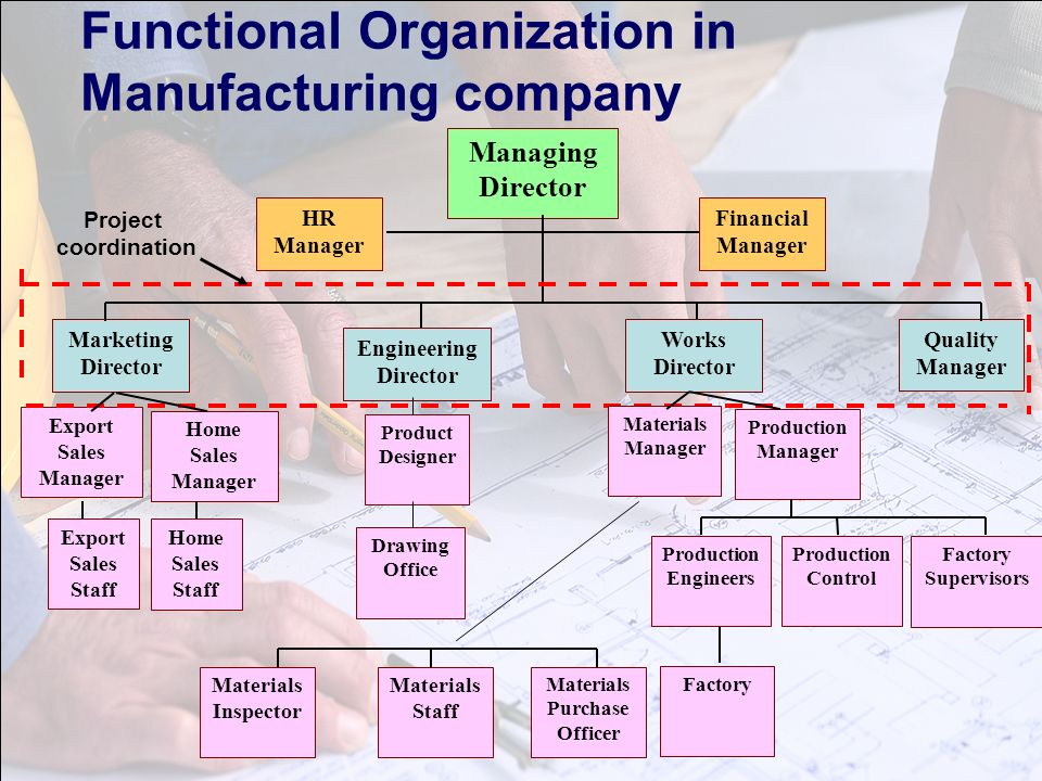 organizational structure for walgreens By creately templates org chart template for department based companies color highlighting to differentiate between departments and positions.