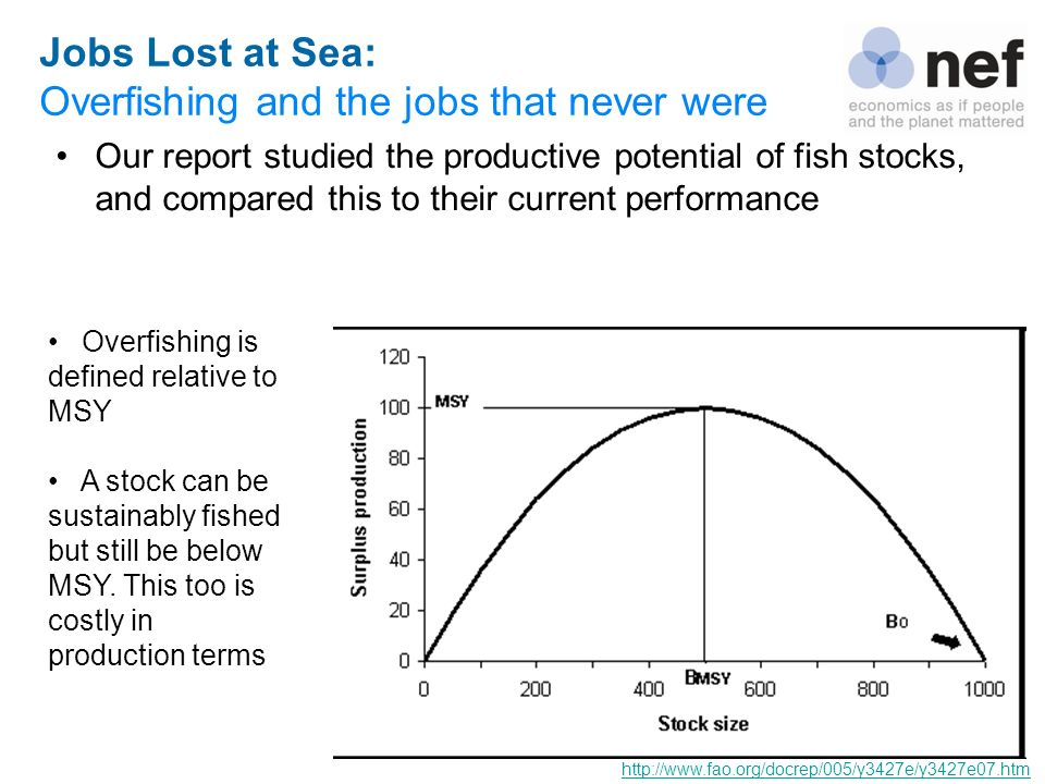 Overfishing and the jobs that never were