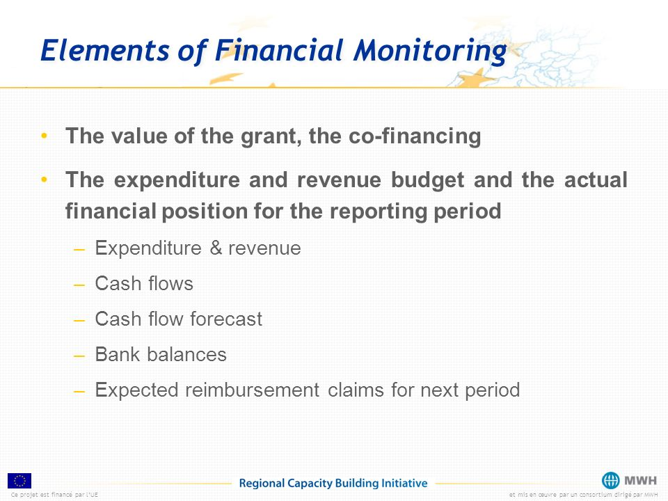 Elements of Financial Monitoring