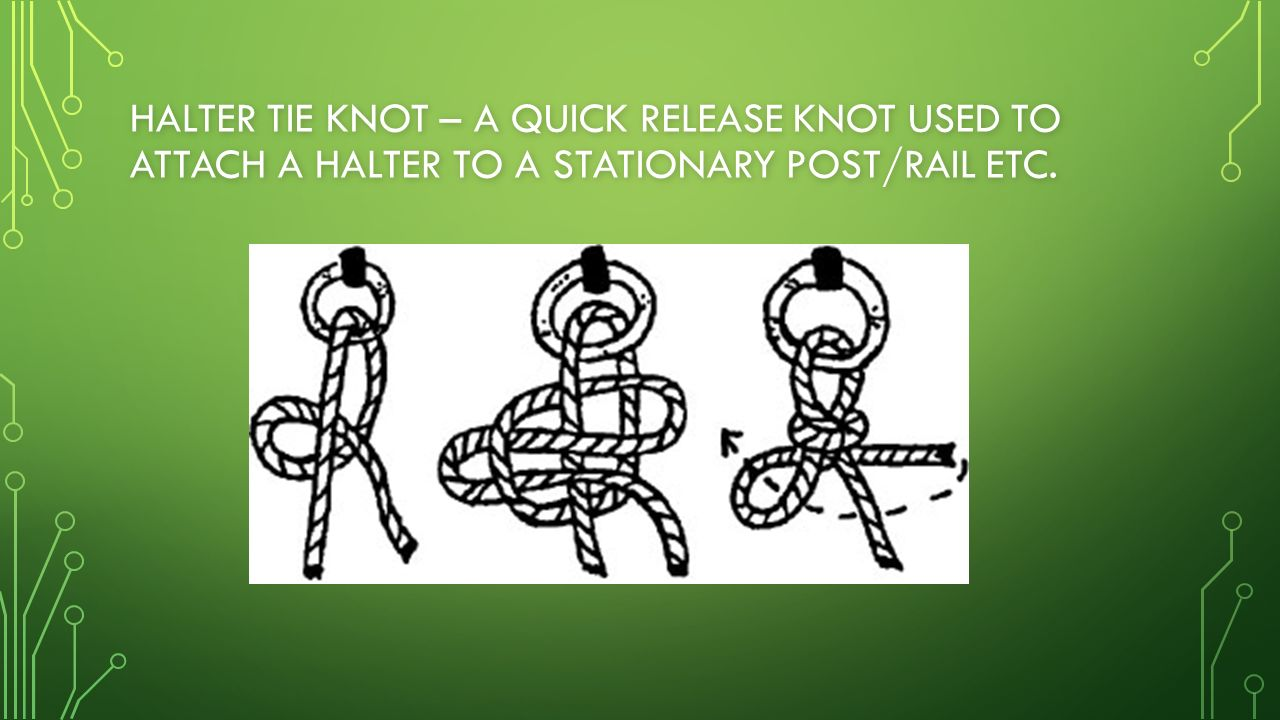 How To Tie A Quick Release Knot (highwayman's Hitch): 8 Steps Posey Roll