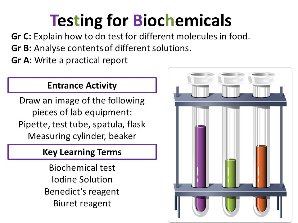 biochemical food tests