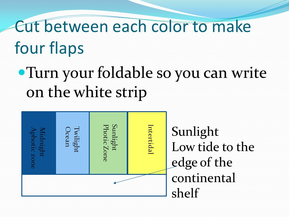 Cut between each color to make four flaps