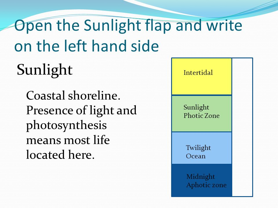 Open the Sunlight flap and write on the left hand side