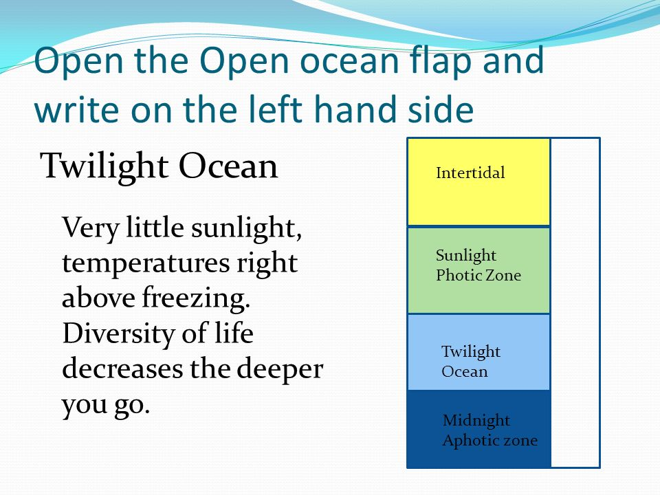 Open the Open ocean flap and write on the left hand side