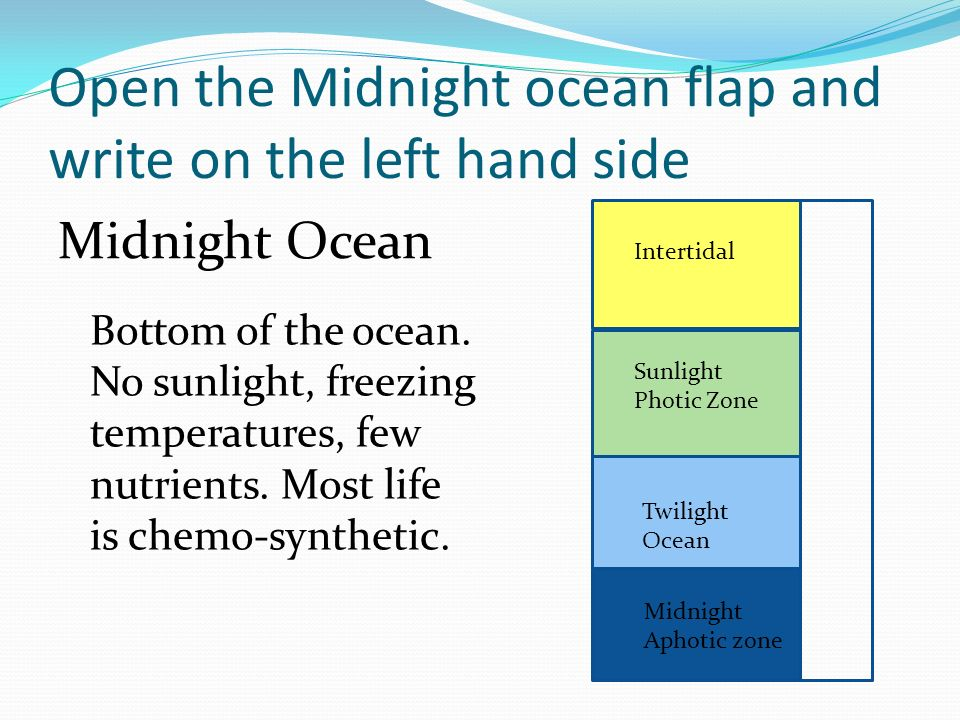 Open the Midnight ocean flap and write on the left hand side