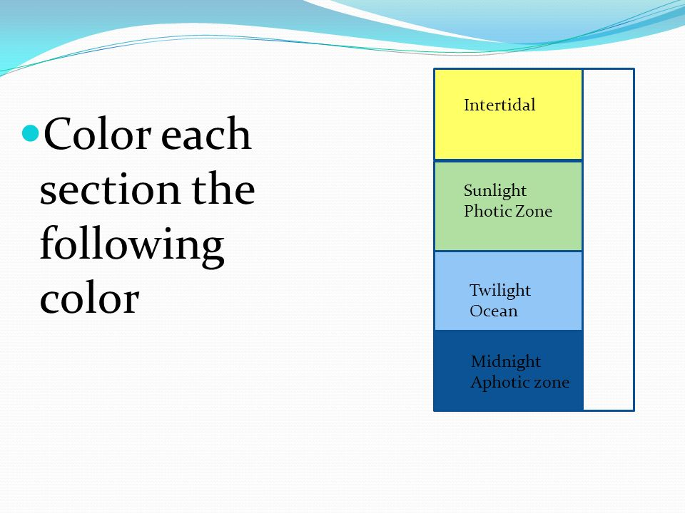 Color each section the following color