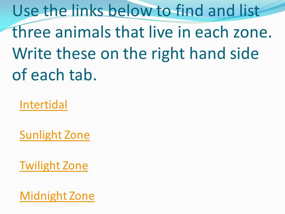 Use the links below to find and list three animals that live in each zone. Write these on the right hand side of each tab.