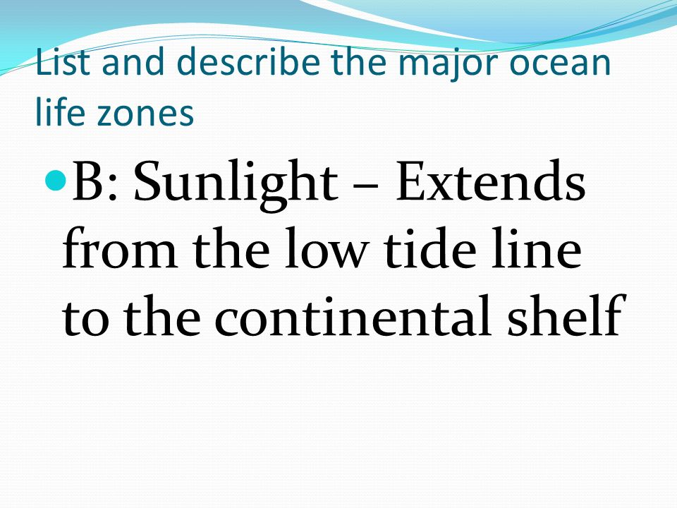 List and describe the major ocean life zones