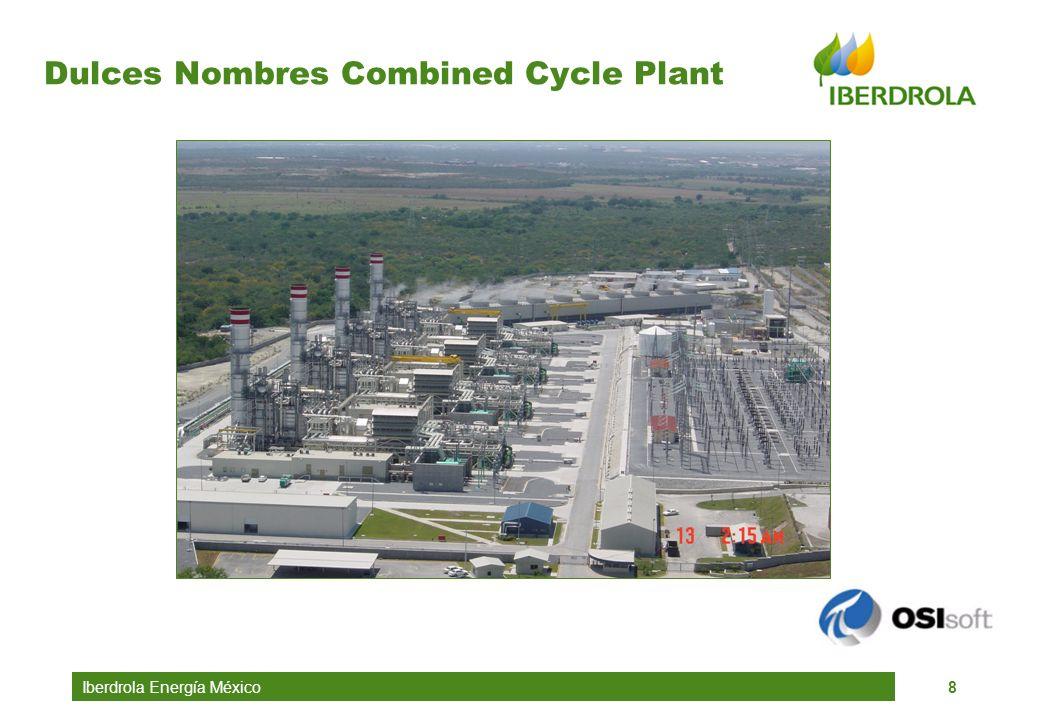 Dulces Nombres Combined Cycle Plant