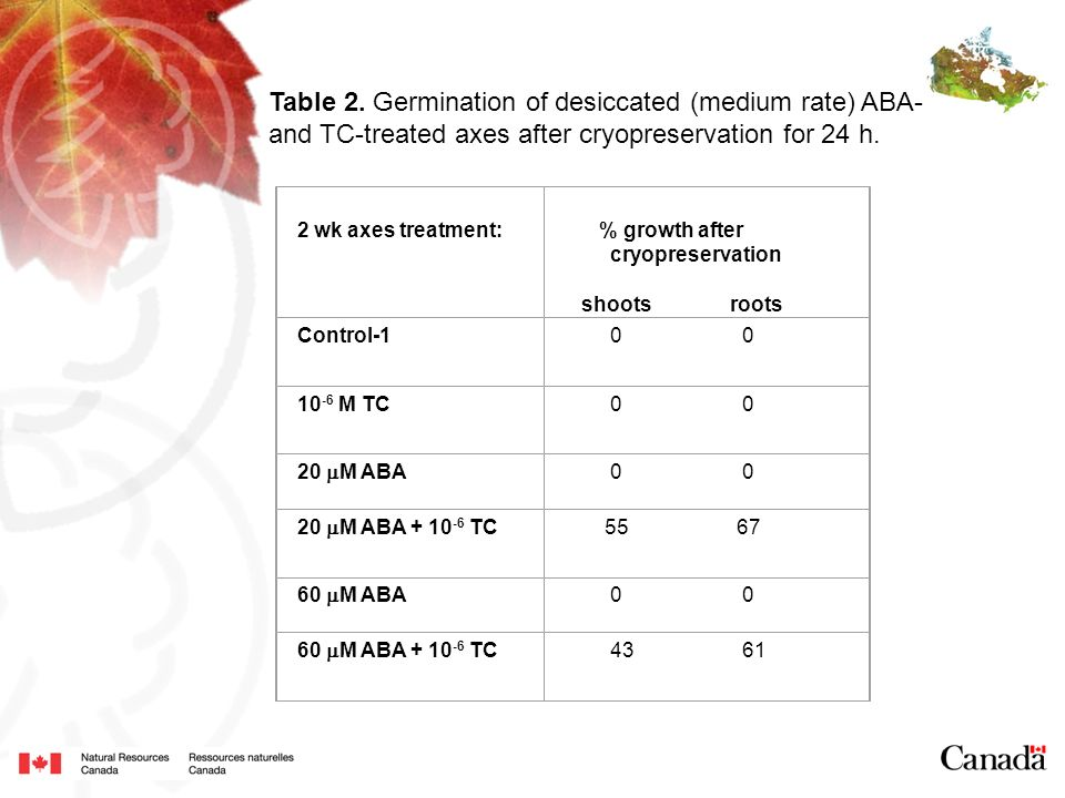 Table 2. Germination of desiccated (medium rate) ABA-