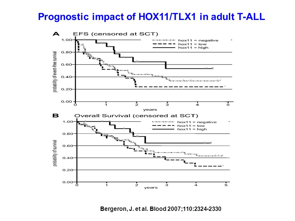 Prognostic impact of HOX11/TLX1 in adult T-ALL