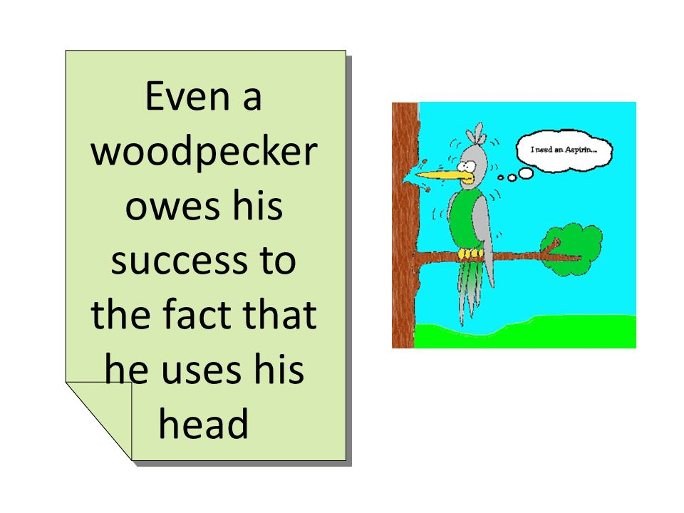 Even a woodpecker owes his success to the fact that he uses his head