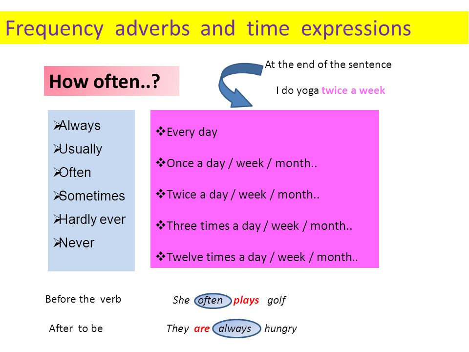 Frequency adverbs and time expressions