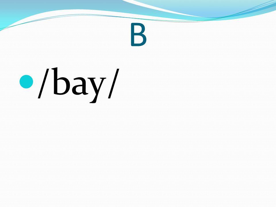 B /bay/