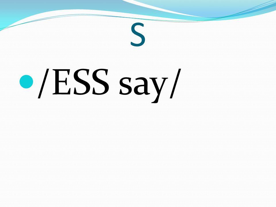 S /ESS say/