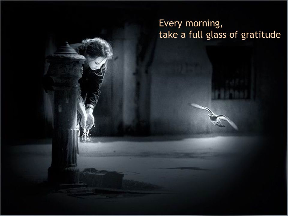 Every morning, take a full glass of gratitude