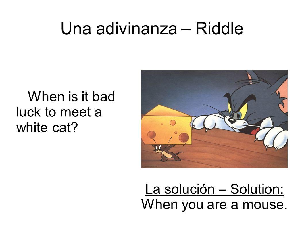 Una adivinanza – Riddle