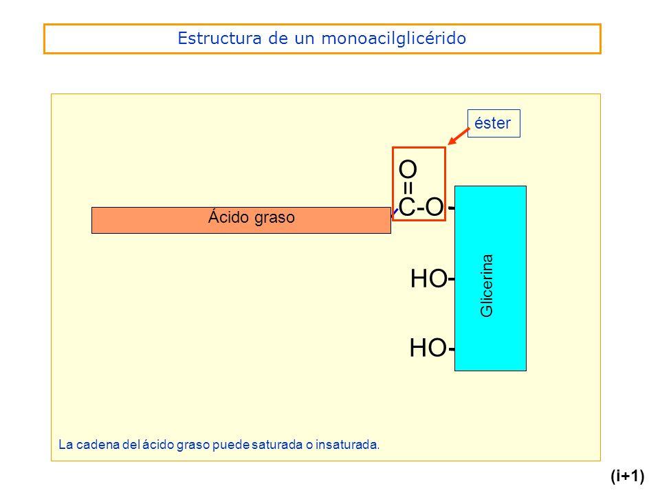 Estructura de un monoacilglicérido