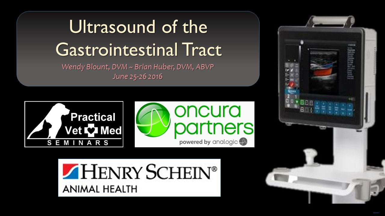 Ultrasound Of The Gastrointestinal Tract Ppt Video Online