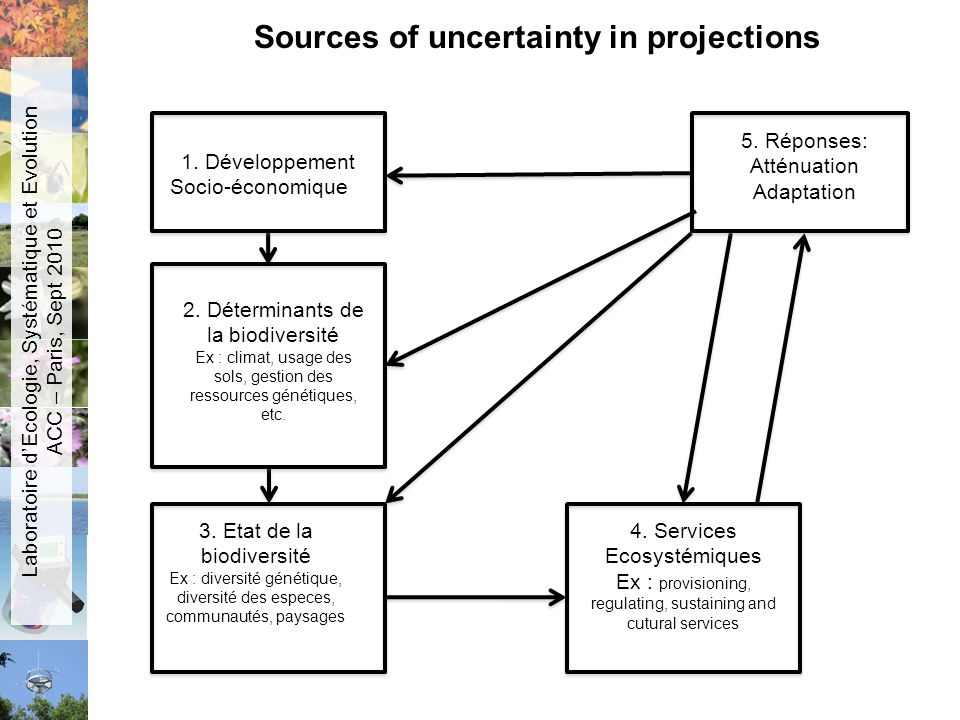 Sources of uncertainty in projections