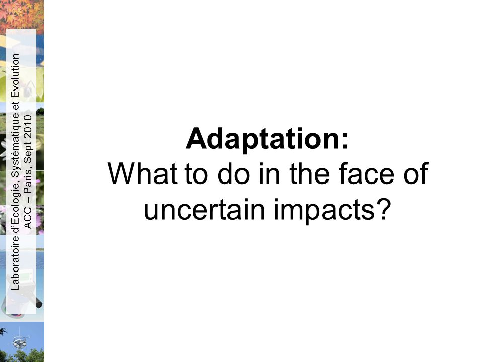Adaptation: What to do in the face of uncertain impacts