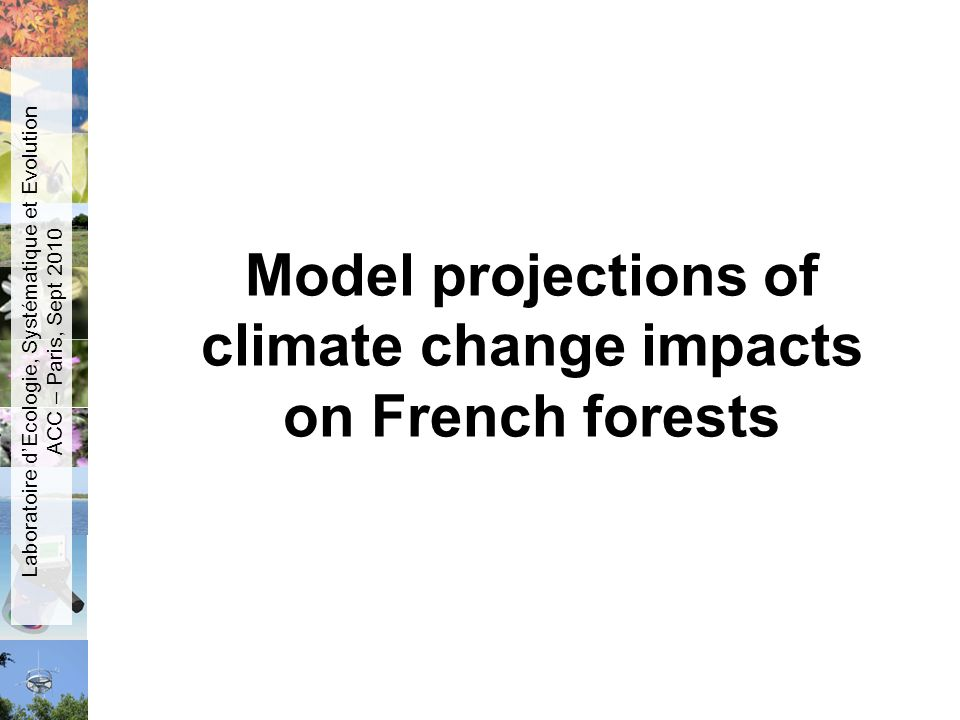 Model projections of climate change impacts on French forests