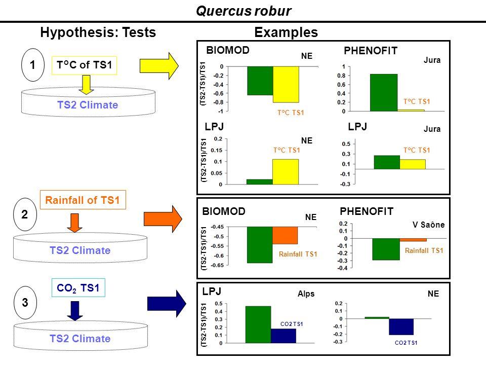 Quercus robur Quercus robur Hypothesis: Tests Examples