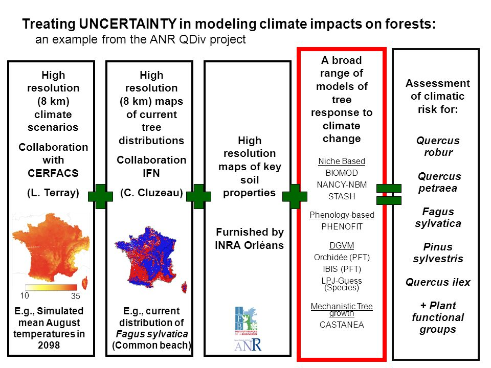 Treating UNCERTAINTY in modeling climate impacts on forests: an example from the ANR QDiv project