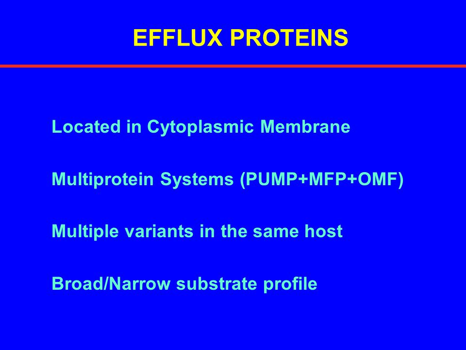 EFFLUX PROTEINS Located in Cytoplasmic Membrane