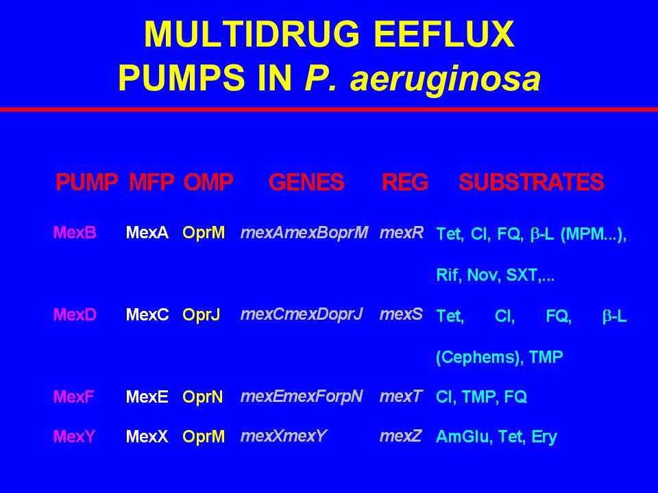MULTIDRUG EEFLUX PUMPS IN P. aeruginosa