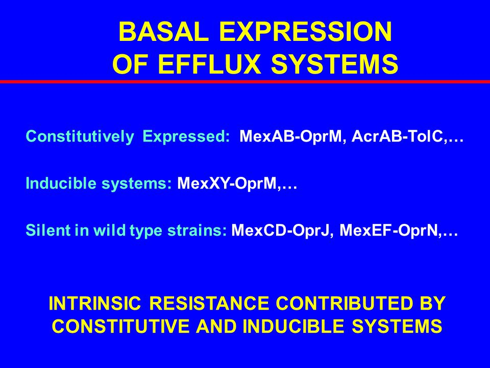 BASAL EXPRESSION OF EFFLUX SYSTEMS