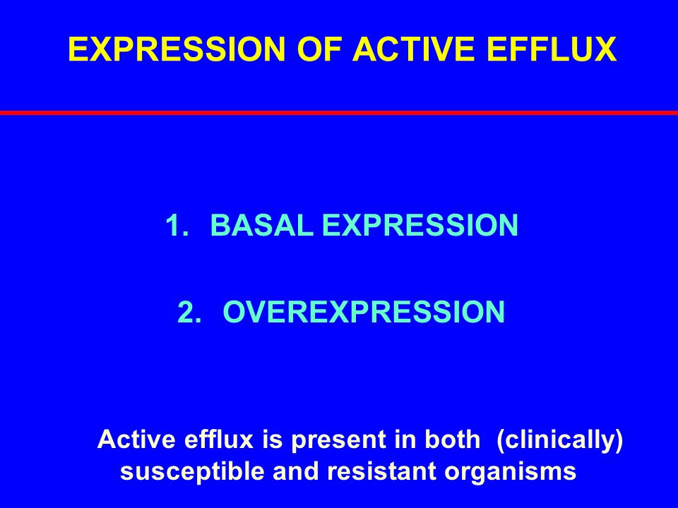 EXPRESSION OF ACTIVE EFFLUX
