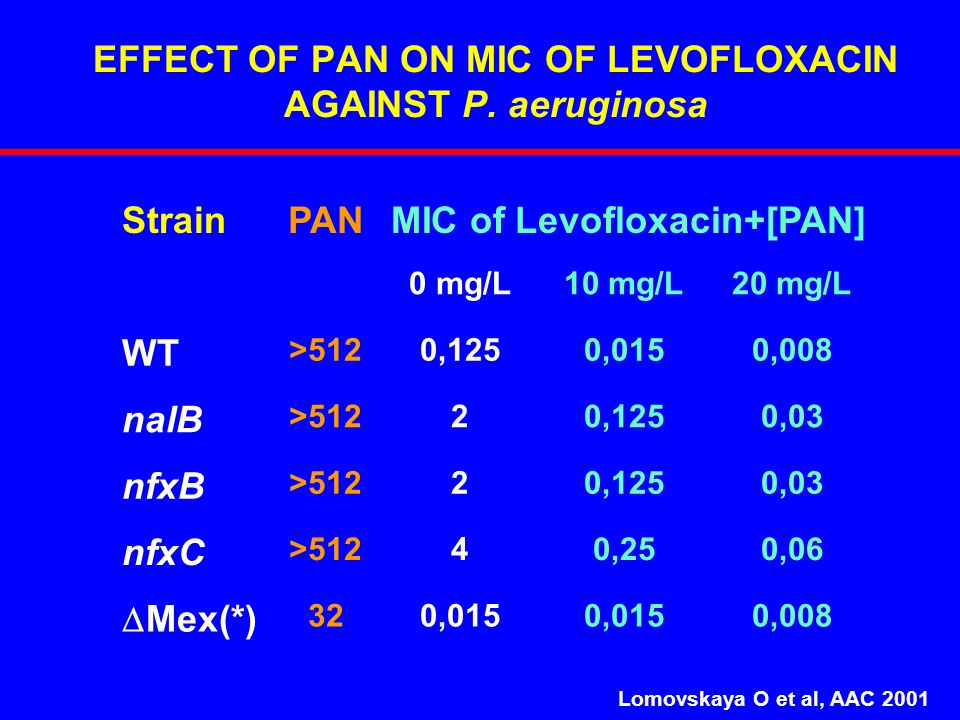 EFFECT OF PAN ON MIC OF LEVOFLOXACIN AGAINST P. aeruginosa