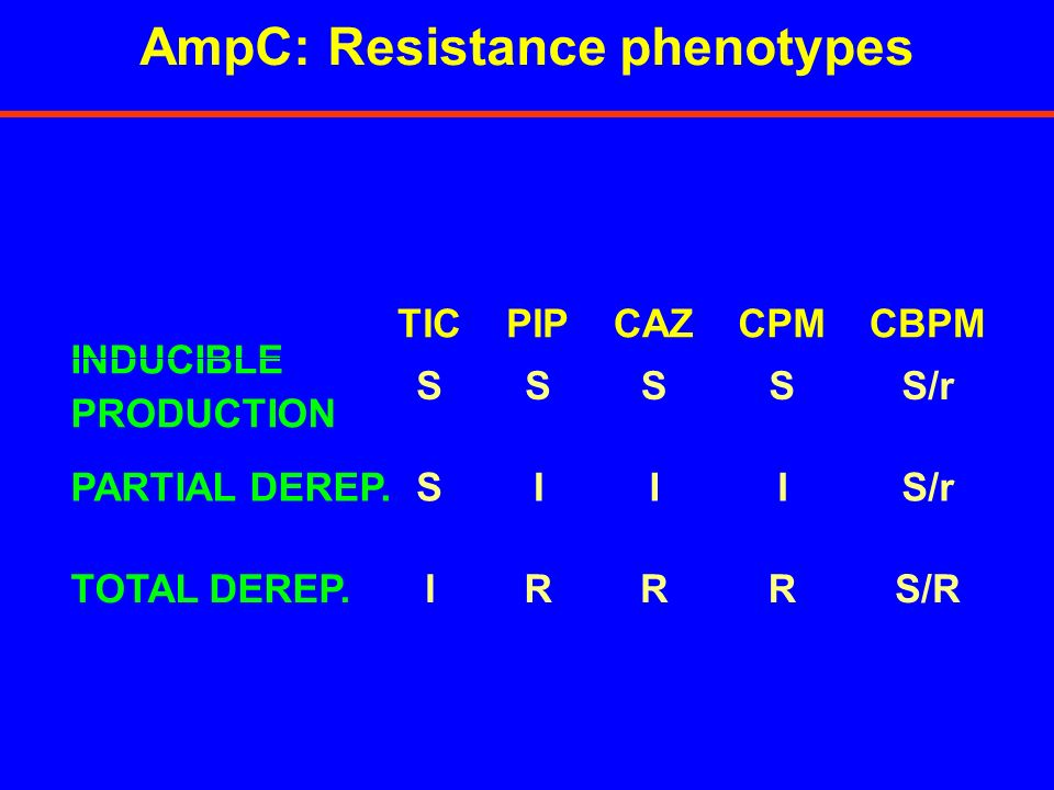 AmpC: Resistance phenotypes