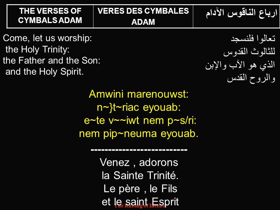 THE VERSES OF CYMBALS ADAM ---------------------------