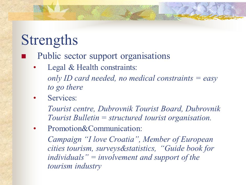 Strengths Public sector support organisations
