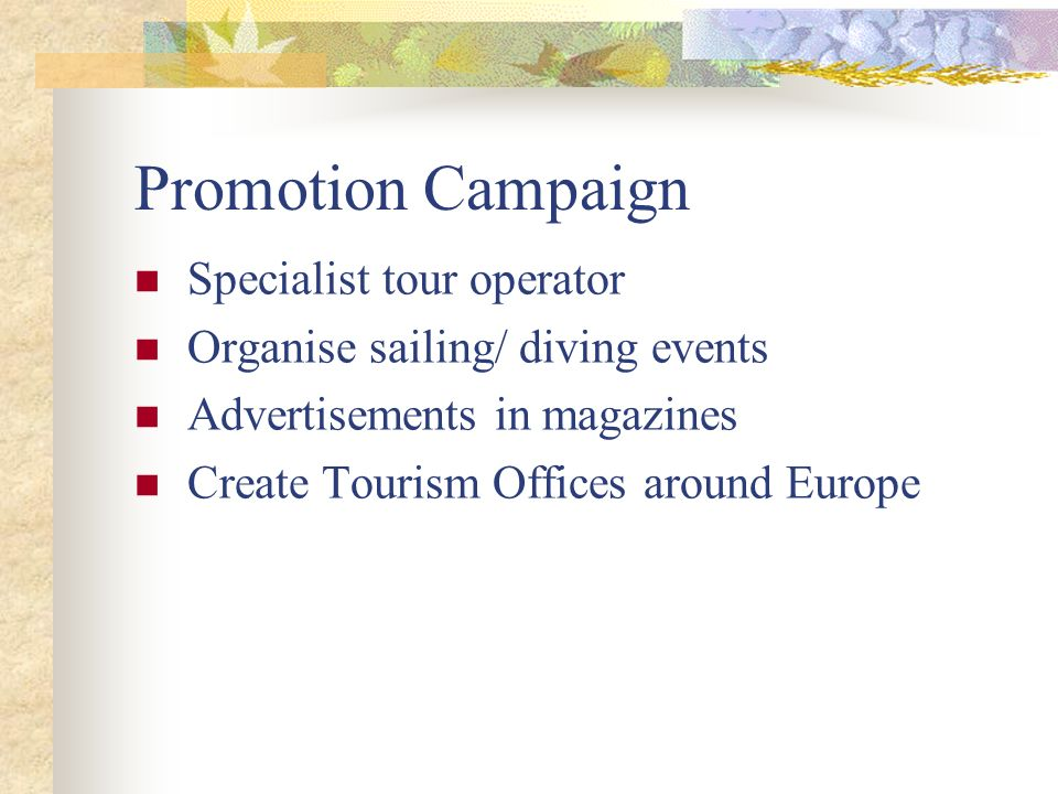 Promotion Campaign Specialist tour operator