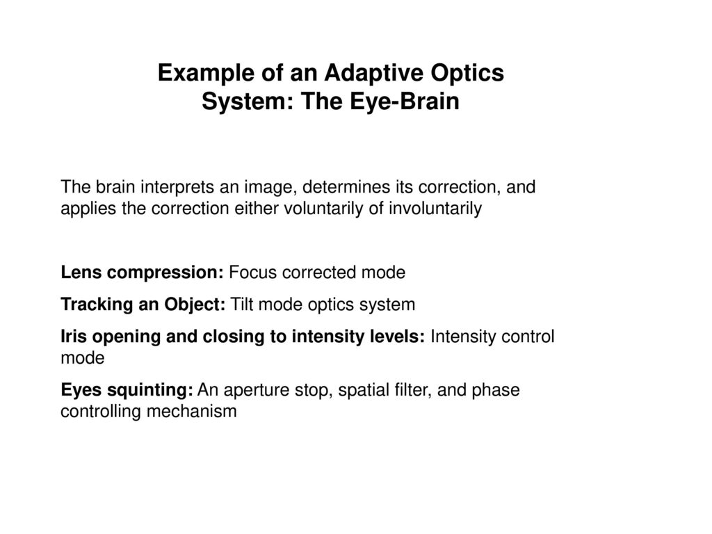 Example of an Adaptive Optics System: The Eye-Brain