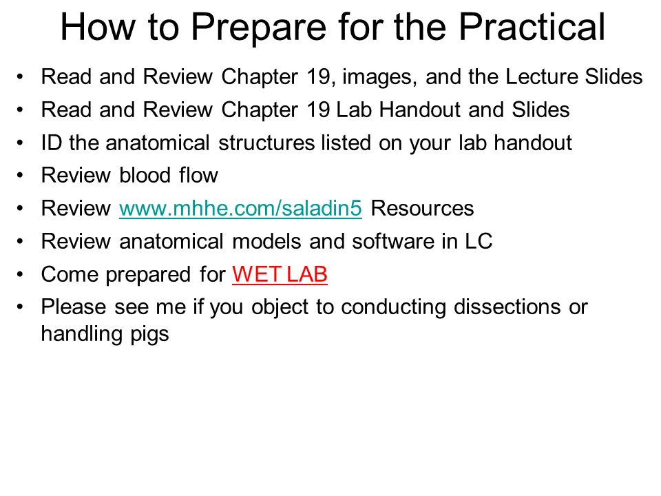 How to Prepare for the Practical