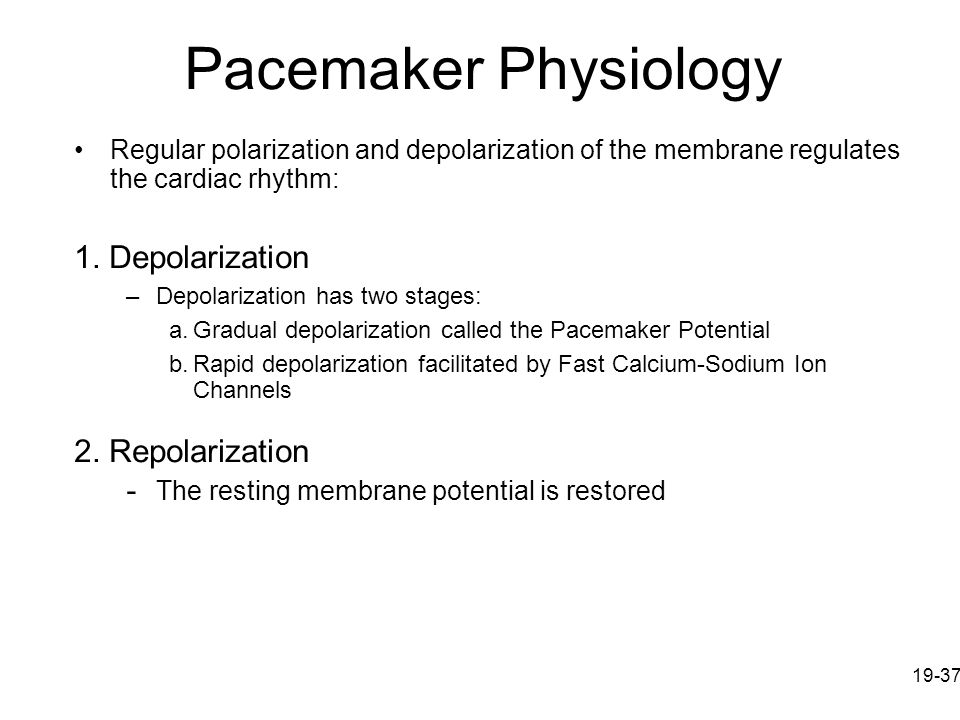 Pacemaker Physiology 1. Depolarization 2. Repolarization