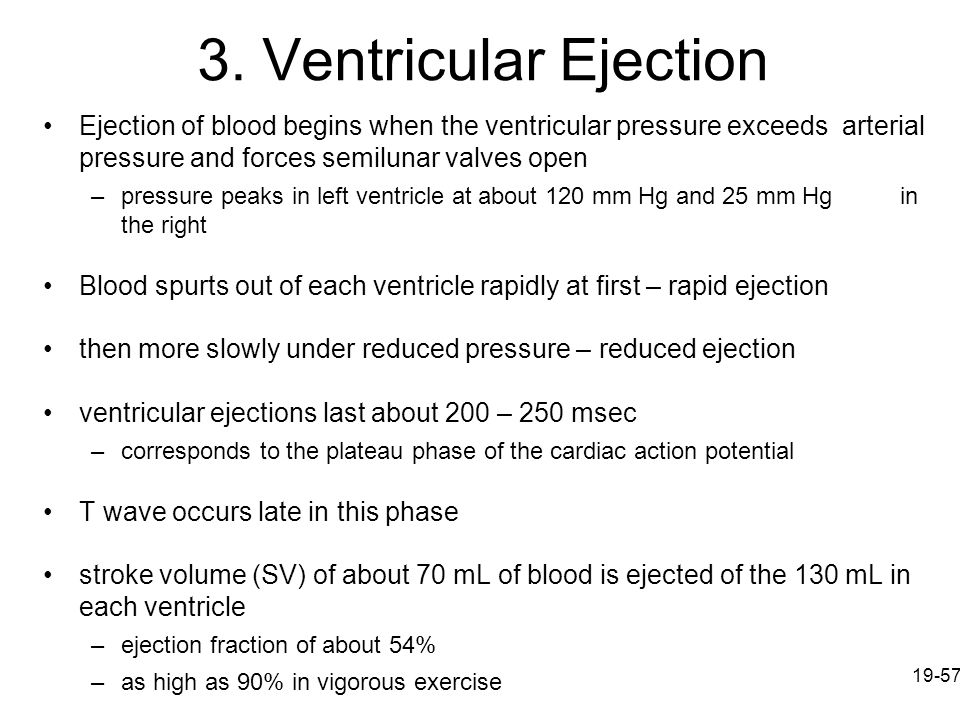 3. Ventricular Ejection Ejection of blood begins when the ventricular pressure exceeds arterial pressure and forces semilunar valves open.