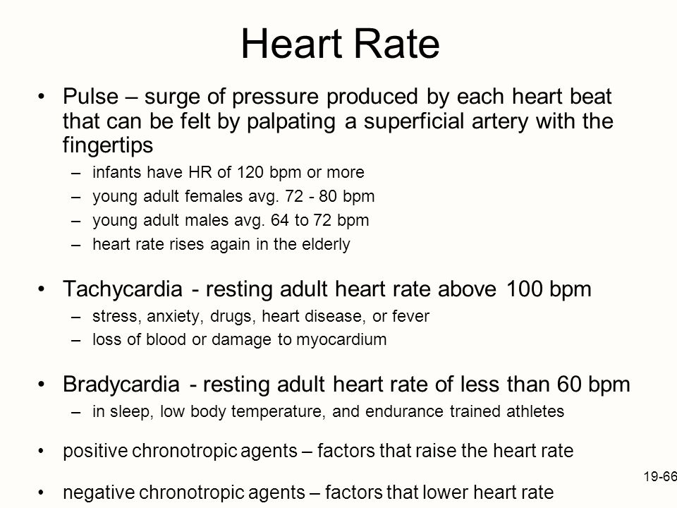 Heart Rate Pulse – surge of pressure produced by each heart beat that can be felt by palpating a superficial artery with the fingertips.